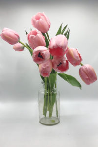 Thomas Farm Tulip