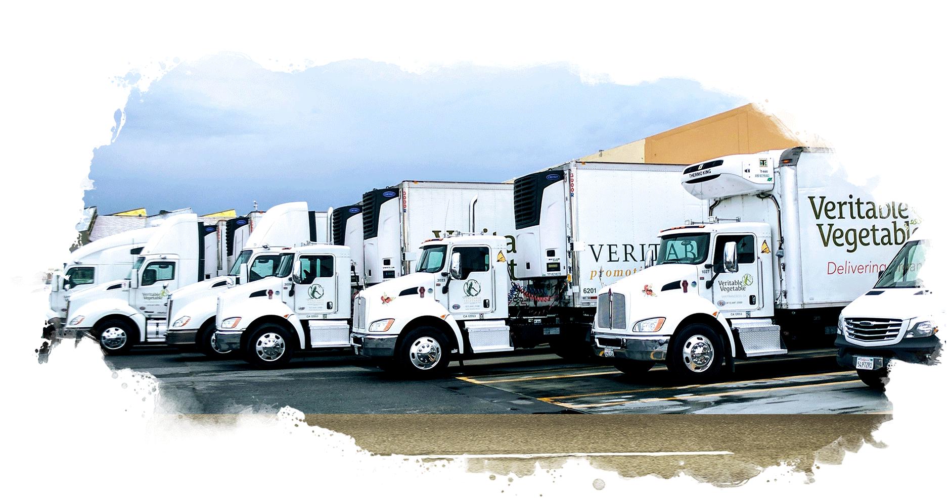 VV Truck Fleet