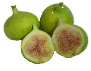 Kadota Fig
