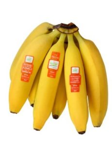 GROW Bananas