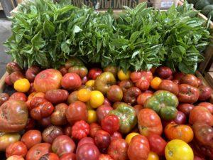 Tomato Display