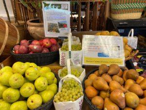 Grassroots Natural Foods Marian Grape Display