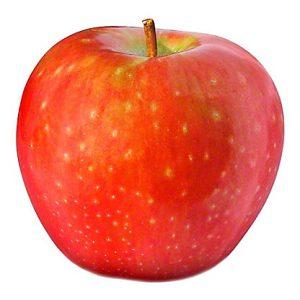 SugarBee Apple