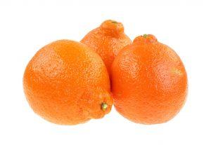 Citrus- Minneola