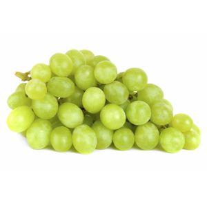 Autumn Crisp Grape
